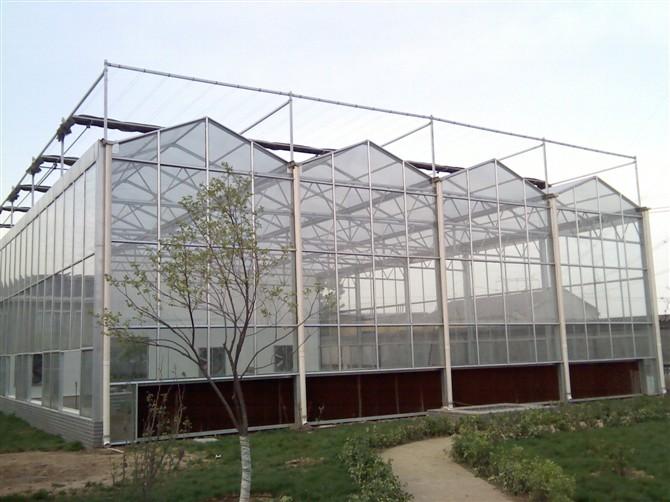 玻璃温室安装完成