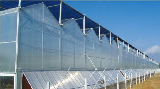 智能温室工程效果
